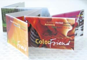 ColorFriends